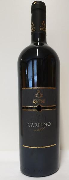Ricchi Garda Merlot Carpino 2015