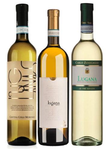 Lugana 6er Weinpaket, Ricchi, Morenici, Zenegaglia